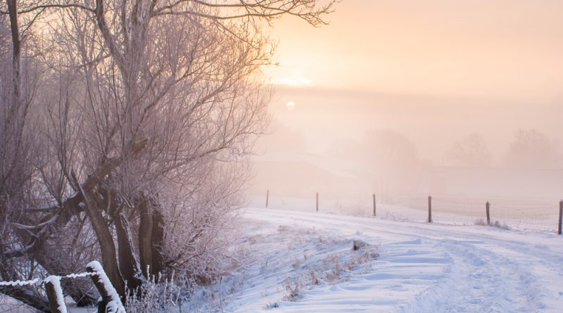 Der erste Schnee in Rheinland-Pfalz am Dienstag