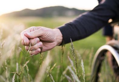 Sprechstunde des Beauftragten für die Belange von Menschen mit  Behinderung im März