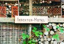 Beet-Paten freuen sich über Insektenhotel in Koblenz